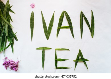 Ivan tea sign made from ivan-tea leaves and flowers
