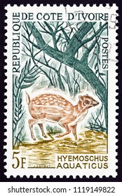 IVORY COAST - CIRCA 1962: A stamp printed in Ivory Coast shows a Water Chevrotain (Hyemoschus aquaticus), circa 1962.