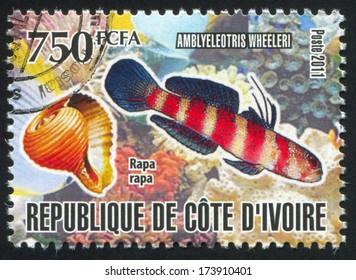 IVORY COAST - CIRCA 2011: stamp printed by Ivory Coast, shows fish, circa 2011