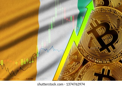 Ivory Coast flag and cryptocurrency growing trend with many golden bitcoins