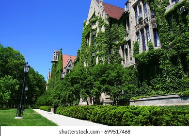 Ivy clad halls at University of Chicago in summer, IL, USA