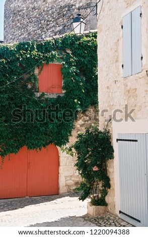 Ivy covered building with red doors