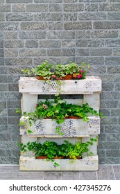 Ivy on a wooden pallet on the brick wall background