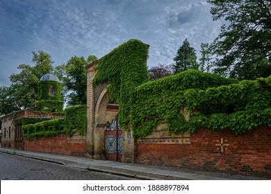 "Ivy-clad wall of the historical ""Tempelgarten"" (""Temple Garden"") Neuruppin, built in Moorish style (front to the ""Praesidentenstrasse"")"