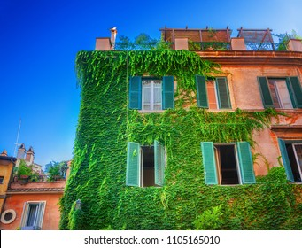 Ivy-covered house in Rome