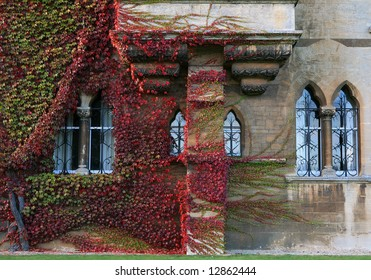 An ivy-covered wall and mullioned windows of Magdalen College, Oxford.