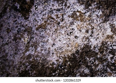 Iwami Ginzan (Silver Mine), Ohkubo Mineshaft; dewdrops seen closeup here shine brilliantly on the walls of the mine in places like diamonds