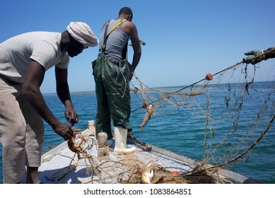 IWIK, MAURITANIA - MARCH 22, 2017: fishermen pulling out nets in the Bancs d'Arguin National Park waters.