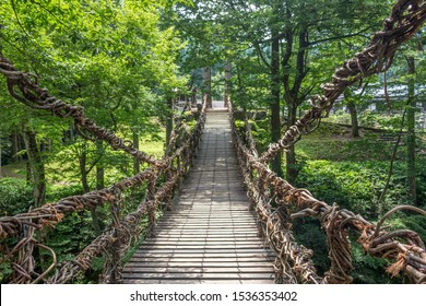 Iya Kazurabashi suspension bridge made of mountain vines, Fukui Prefecture, Japan. The bridge is anchored to tall cedar trees at both ends and has steel cables hidden within the vines for safety.