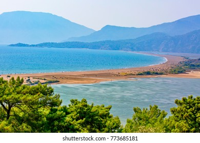Iztuzu beach in Dalyan is that rare thing in the Mediterranean a 5km arc of golden sand stretching from the base of a pine-clad Taurus mountain to a river delta.