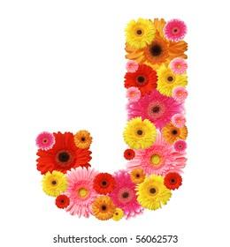J, flower alphabet isolated on white