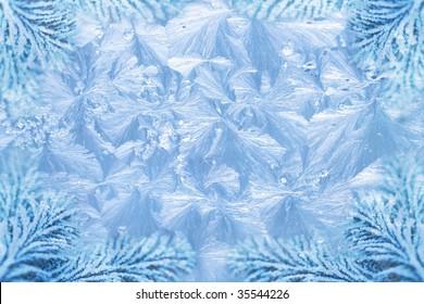 jack frost ice crystal patterns & snowy spruce branch tips