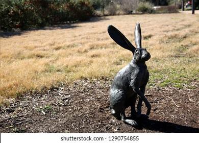 Jack rabbit statue at Lady Bird Johnson Wildflower Center.
