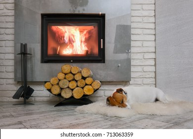 Jack russel terrier sleeping on a white rug near the burning fireplace. Resting dog. Winter hygge concept