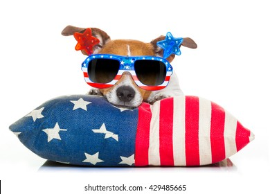 jack russell dog celebrating 4th of july independence day