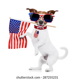 jack russell dog  holding a flag of usa on independence day on 4th  of july , with mouth , isolated on white background,, wearing american sunglasses