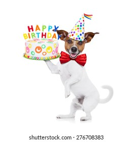 jack russell dog holding a happy birthday cake with  candles , red tie and party hat on , isolated on white background