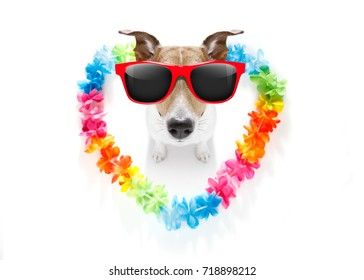 jack russell dog in love for happy valentines day with rainbow  flower chain in heart shape  , looking up in wide angle