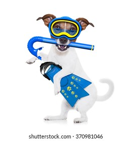 jack russell dog  with mask and fins ,  isolated on white background