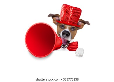 jack russell dog ,shouting  and advertising  sale discount  with retro megaphone or big microphone behind white blank placard or banner, isolated on white background