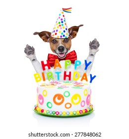 jack russell dog  as a surprise behind happy birthday cake with  candles ,wearing  red tie and party hat  , isolated on white background
