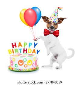 jack russell dog  as a surprise with  happy birthday cake ,wearing  red tie and party hat ,holding balloons , isolated on white background
