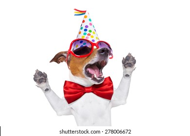 jack russell dog  as a surprise, singing birthday song  , wearing  red tie and party hat  , isolated on white background