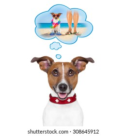 jack russell dog thinking about the summer vacation holidays with owner at the beach, isolated on white background