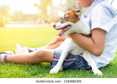 jack russell dogs with a boy relaxing at the park together embracing and hugging.