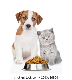 Jack russell terrier puppy and kitten sit with a bowl of dry food. Isolated on white background