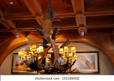 Jackson, Wyoming, United States - February 22, 2009: Moose Antler chandelier close up with wood panelled ceiling in a western lodge Wyoming