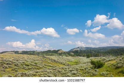 Jackson, Wyoming, USA. The prairie with sagebrush, a wooden fence and corralled horses under blue sky and clouds in summer near Jackson, Wyoming, USA.