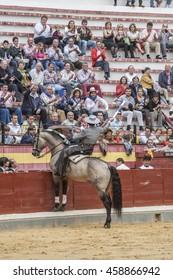 Jaen, SPAIN - October 13, 2008: Alvaro Montes, bullfighter on horseback spanish, Jaen, Spain