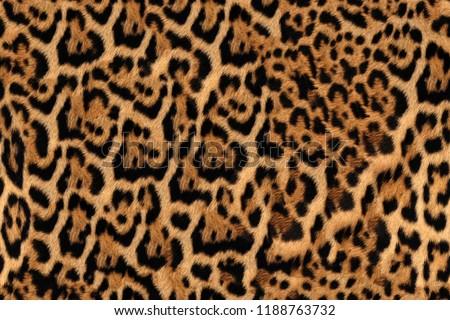Jaguar Fur Pattern Seamless