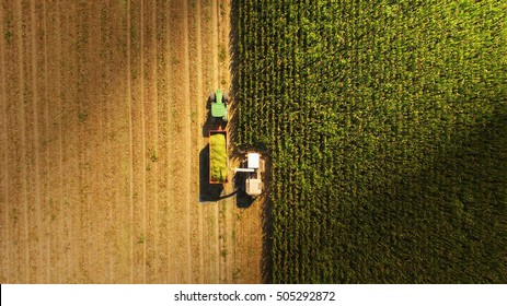 A Jaguar type harvester working with a John Deere tractor with trailer, over an italian agricultural field. Pavia province - Italy 23 october 2016