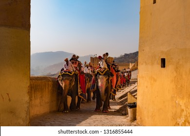 Jaipur, India - December 29, 2018 : Unidentified people riding elephants up the hill to the main entrance of Amber Fort. The Amer Fort is one of the most famous forts of Rajasthan.