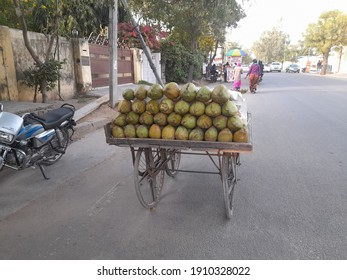 Jaipur, India - Feb 05, 2021 : People like coconut water very much, it is easily available in the market. You will see coconuts on this type of cart in Jaipur market.