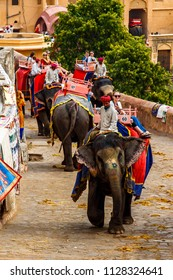 JAIPUR. INDIA - MARCH 15, 2018 : Tourists ride the elephants. Elephants were the major transportation during the past in India