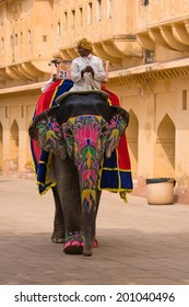 JAIPUR, INDIA - NOVEMBER 10, 2012: Decorated elephant on the road at Amber Fort in Jaipur, Rajasthan, India.