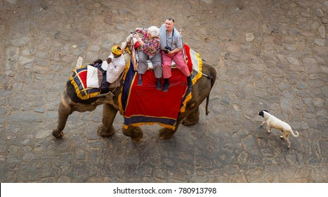 Jaipur, Rajasthan, India, December 11,2017: Tourists enjoy a decorated elephant ride on way to Amer Fort Jaipur. A street dog is seen following the elephant.