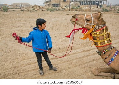 JAISALMER, INDIA - MAR 2: Unidentified boy training a camel with emotions during the popular annual Desert Festival on March 2, 2015. Every winter Jaisalmer takes the famous Desert Festival