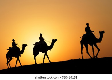 JAISALMER, INDIA, November 2, 2017 : Caravan of camels at sunset in the sand desert. Several safaris in the desert are organized for the tourists by local operators.