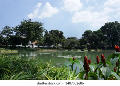 Jakarta, Indonesia August 21, 2019 : Situ lembang park located at Menteng region in central Jakarta. Situ lembang was an oldest public park in Jakarta with a little lake.