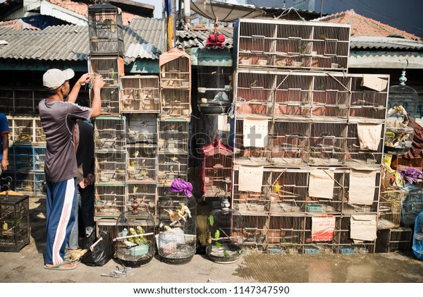 Jakarta Indonesia on July 29, 2018: A person sells bird cages in the market