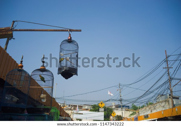 Jakarta Indonesia on July 29,2018: bird cages at market