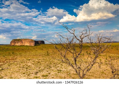 JALAPAO, BRAZIL - CIRCA SEPTEMBER, 2018: Typical landscape of the cerrado, biome of the dry central region of Brazil and that can be visited in Jalapao, state of Tocantins