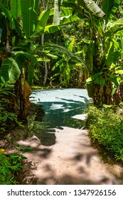 JALAPAO, BRAZIL - CIRCA SEPTEMBER, 2018: Fervedouro do Ceiça is one of the crystalline water springs that sprout from the sand where tourists can swim in the region of Jalapao, Tocantins