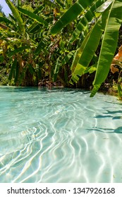 JALAPAO, BRAZIL - CIRCA SEPTEMBER, 2018: Fervedouro Bela Vista is one of the crystalline water springs that sprout from the sand where tourists can swim in the region of Jalapao, Tocantins