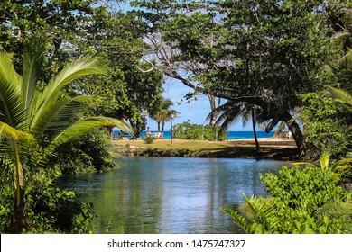Imagenes Fotos De Stock Y Vectores Sobre Lagoon Jamacia