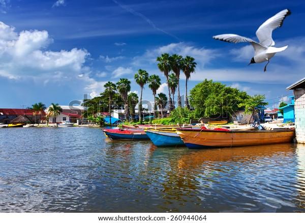 Jamaika. Nationalboote auf dem Schwarzen Fluss.